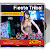 Fiesta Tribal 2021 - 2CDs (320Kbps) Mediafire | MEGA