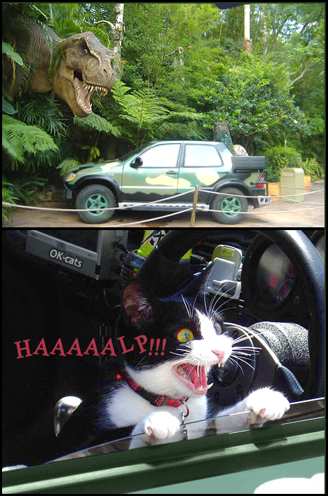 "Photoshopped Cat picture • Scared cat in a car: ""HAAAAALP!!! Tyrannosaurus T-rex will eat me!"""