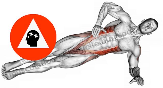 exercice musculation abdos gainage laltéral oblique