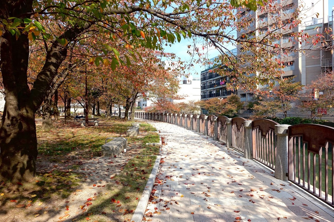 天神中央公園(Tenjin Central Park)