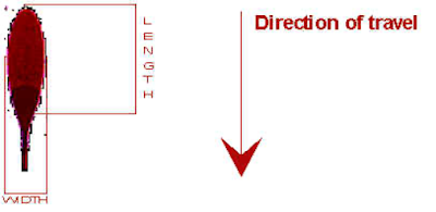 direction of blood