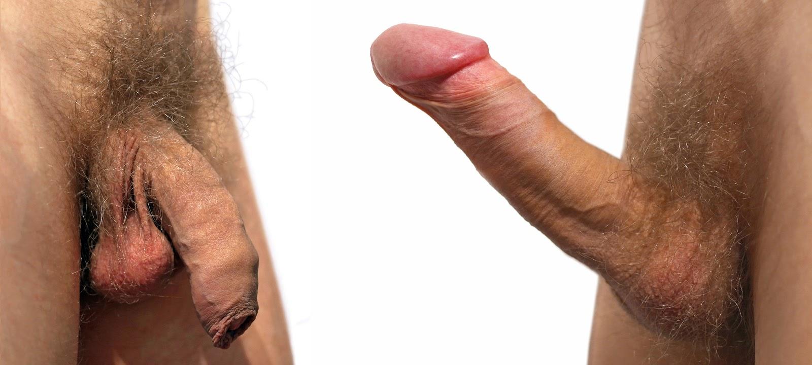 Почему в порно у мужиков обрезанные хуи