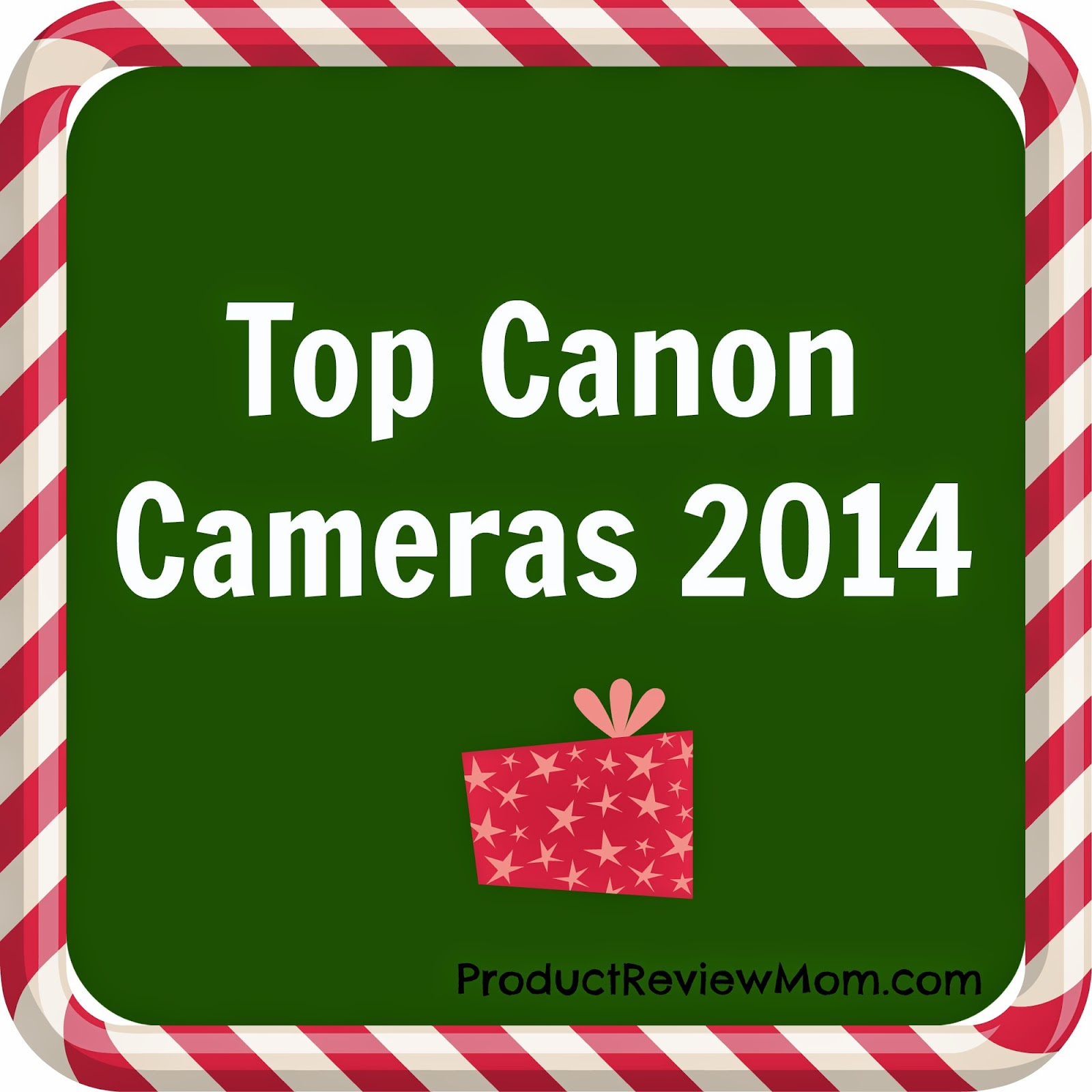 Top Canon Cameras 2014 #HolidayGiftGuide via www.productreviewmom.com