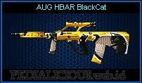 AUG HBAR BlackCat
