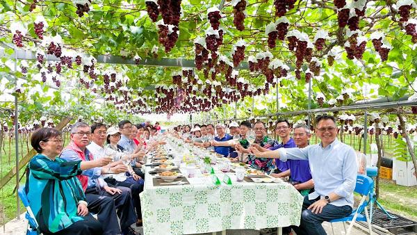 埔心鄉公所辦葡萄樹下的饗宴 張乘瑜邀葡萄產季遊客庄