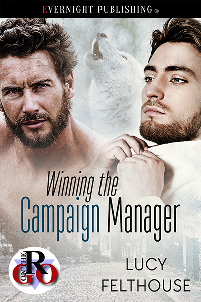 Winning the campaign manager cover