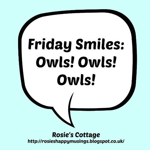 Friday Smiles: owls owls owls