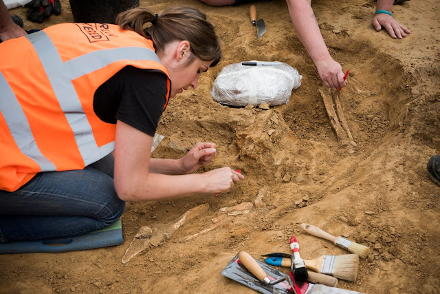 Amputated limbs unearthed at Battle of Waterloo field hospital site