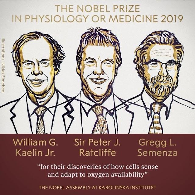 Nobel Prize Award in Physiology or medicine in 2019