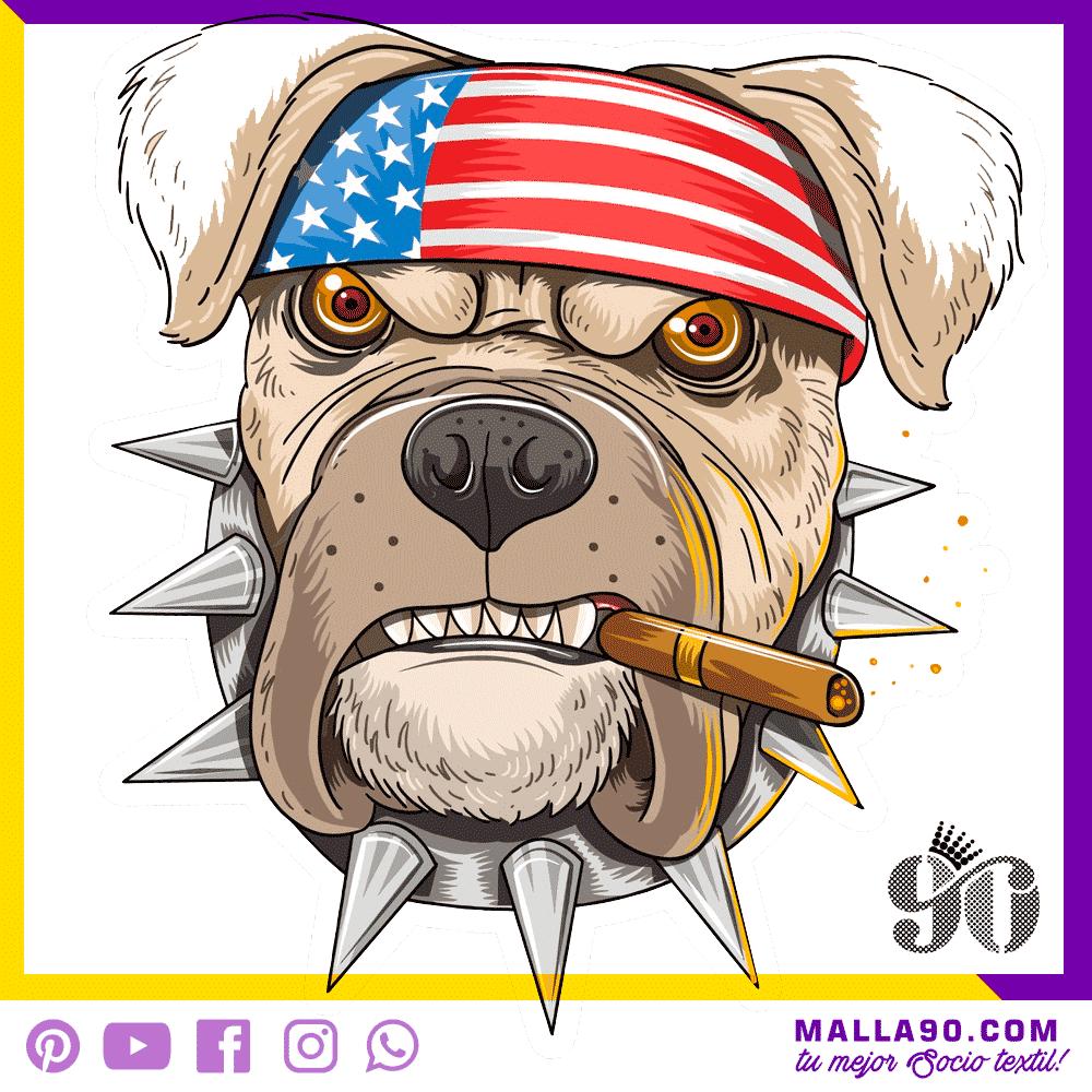 perro americano