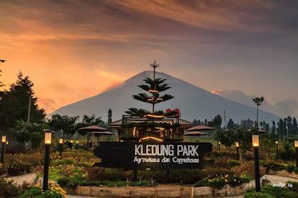 Menu dan Lokasi Kledung Park Sindoro Coffee House Temanggung