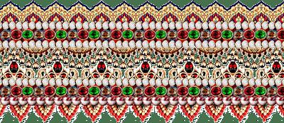 Jwellery-print-Saree-border