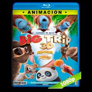Un panda en apuros (2019) BRRip 1080p Latino