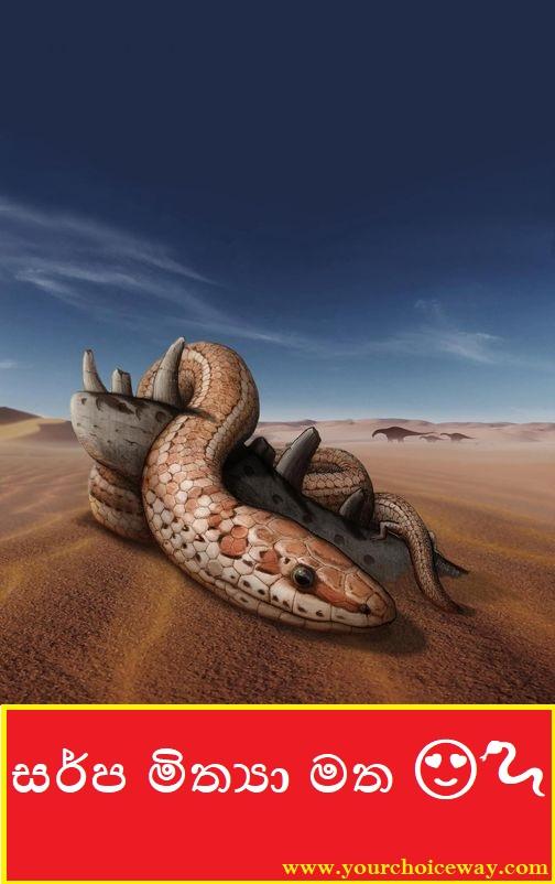 සර්ප මිත්යා මත 😍😍😍😍🐍🐍🐍 (On The Serpent Myth)