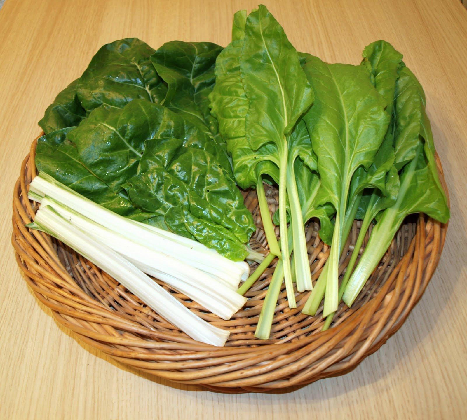 "Mark's Veg Plot: ""Prize-winning"" Spinach"