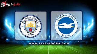 مشاهدة مباراة مانشستر سيتي وبرايتون بث مباشر 06-04-2019 كأس الإتحاد الإنجليزي