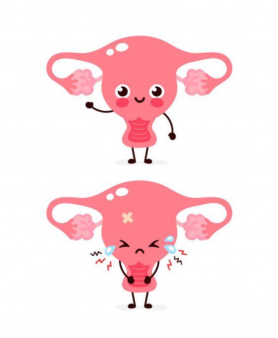 Apa itu Menstruasi?