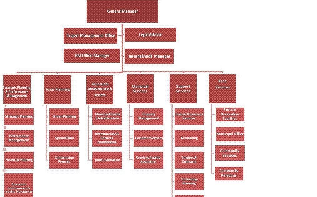 Carrefour organizational structure