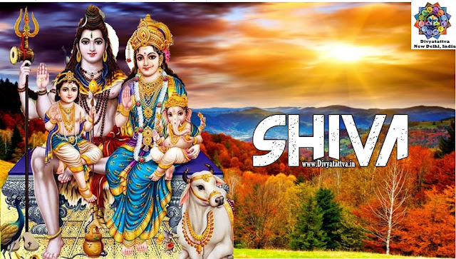 lord shiva wallpapers for mobile download , god shiva wallpaper full size  lord shiva animated wallpapers for mobile phones,  lord shiva hd wallpapers 1920x1080 download