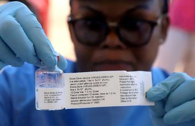 Four new Congo Ebola cases as medics prepare experimental treatment