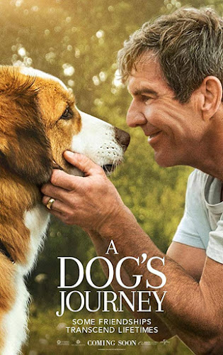 A Dog´s Journey (BRRip 720p Dual Latino / Ingles) (2019)
