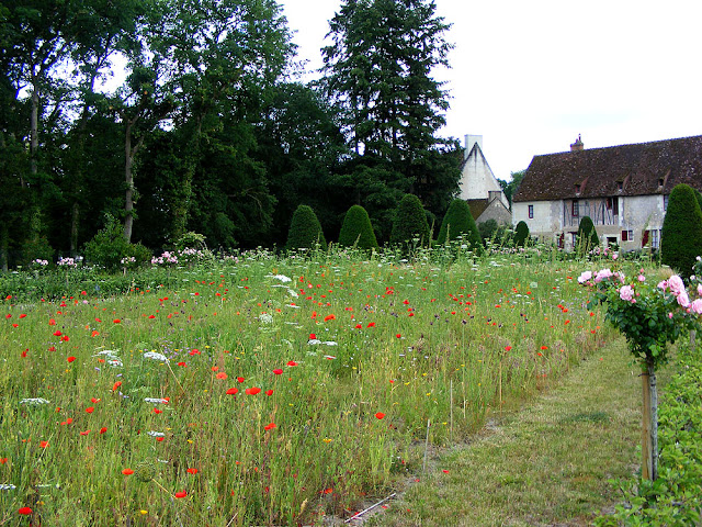 Wild flower meadow in the cutting and kitchen garden, Chateau of Chenonceau, during the Covid19 restrictions.  Indre et Loire, France. Photographed by Susan Walter. Tour the Loire Valley with a classic car and a private guide.