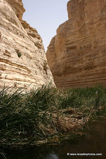 Pictures of Ein Avdat (Ein Ovdat, Ein Abdat, Ein Obodat) a canyon in the Negev Desert, south of the kibbutz Sde Boker