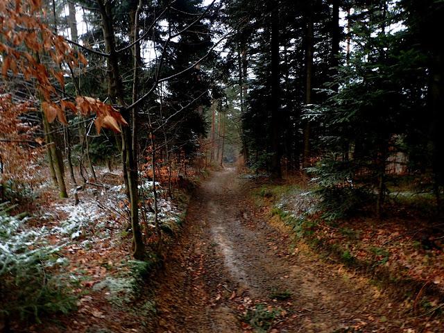 Prawie-jesienna ścieżka na Ciecień w Beskidzie Wyspowym