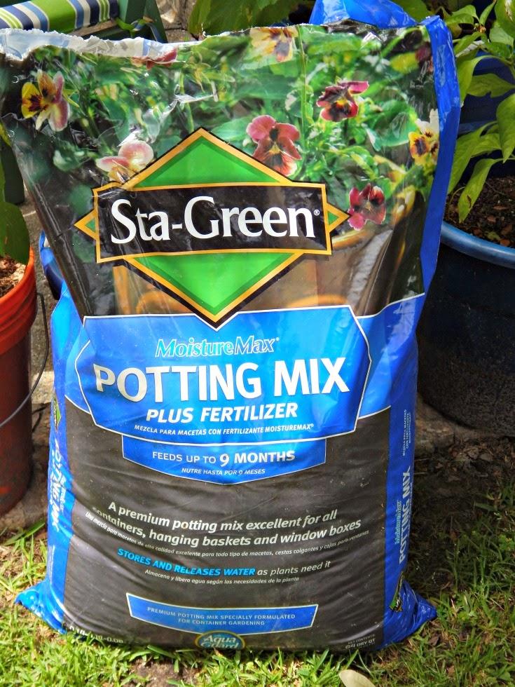 Potting Soil With Fertilizer Bindu Bhatia Astrology