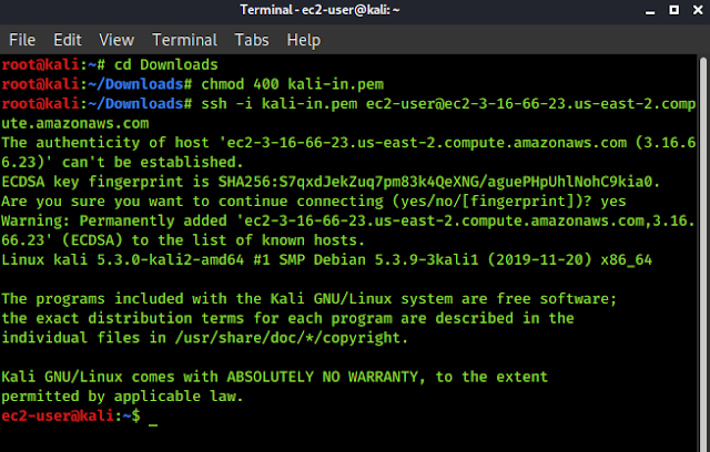 Kali Linux on AWS