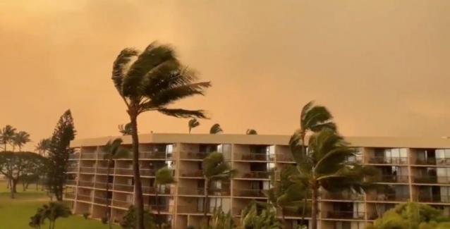 Καίγεται το νησί Μάουι στη Χαβάη! Απομακρύνθηκαν κάτοικοι και τουρίστες