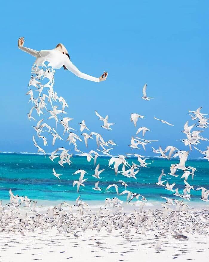 11-Free-as-a-Bird-Archipelago-Martijn-Schrijver-www-designstack-co