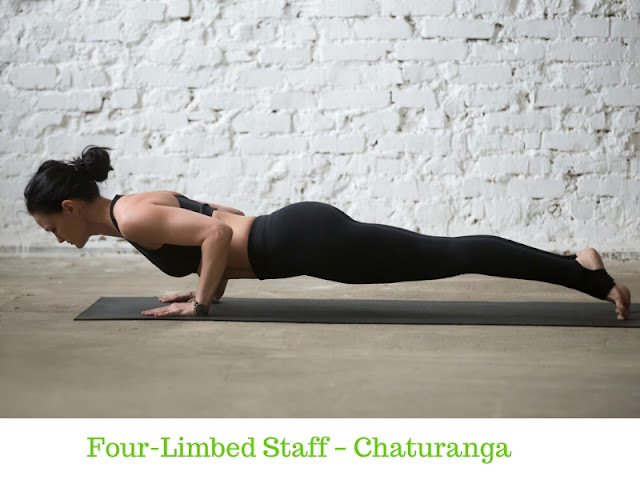 Four-Limbed Staff – Chaturanga