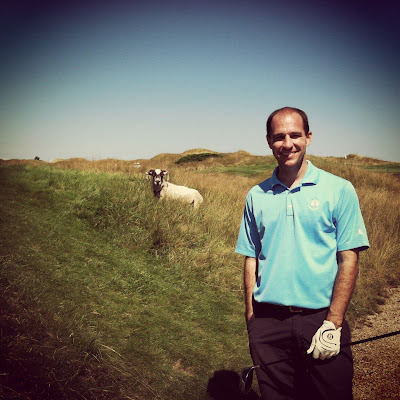 Whistling Straits Sheep