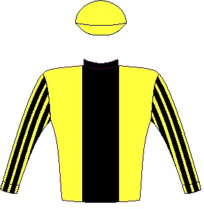 CAPE SPEED - Horse - South Africa - Yellow, black stripe, striped sleeves, yellow cap