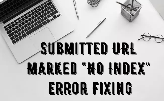 Google Search Console No-Index Errors Fixing