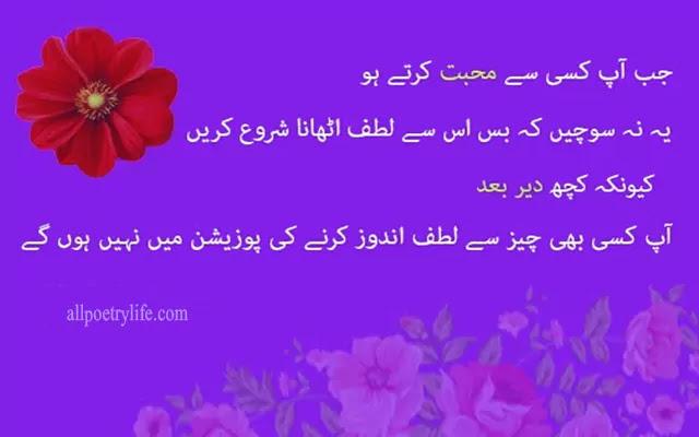 Urdu Love Poetry status, Sad urdu poetry sms,urdu poetry love, urdu poetry status, Jab Aap Kisi Se Mohabbat Karte Hain