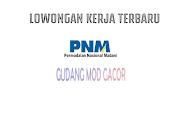 Loker BUMN PNM Untuk Disabilitas Terbaru Juni 2021