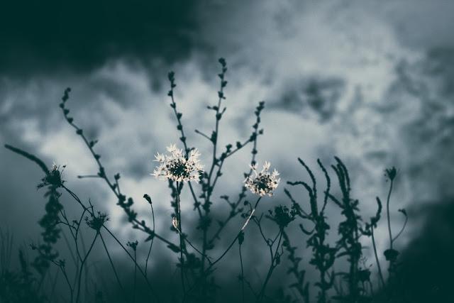 die Nacht, Fragen, Herz, Seele, Wolken,