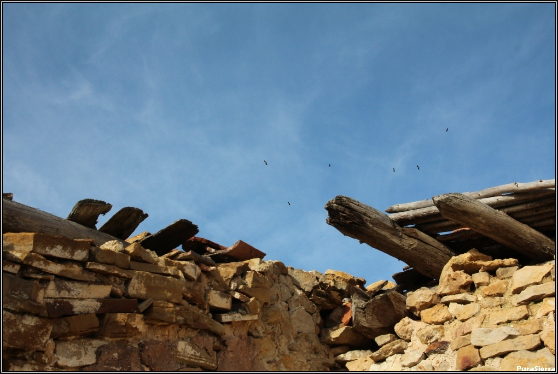 Casas De Frías. Ruinas (9)