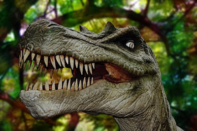 Australian aborigines have accounts of seeing dinosaurs in comparatively recent history