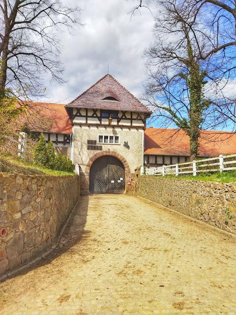 stadnina koni w okolicy zamku Książ