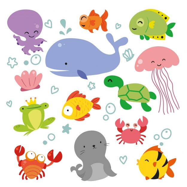 Download Film Kartun Hewan Laut