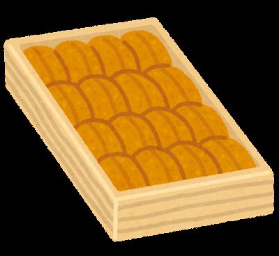 板ウニのイラスト