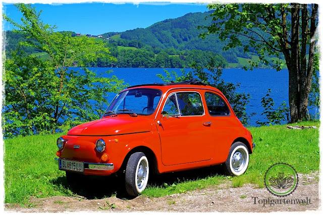 Gartenblog Topfgartenwelt Fiat 500 Fotowettbewerb: Fiat 500 Baujahr 1974 Oldtimer Vintage Car