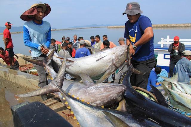 Kondisi Mei 2015, Aceh Ekspor Ikan Tuna dan Impor Alat Listrik