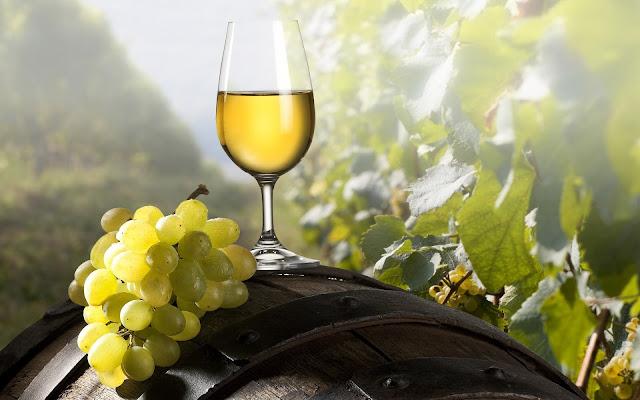 ¿Cuál es el vino más indicado para esta Navidad?