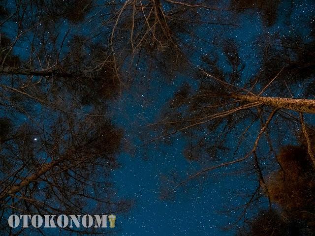 新月での星空1
