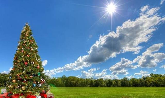 Αρναούτογλου: Δεν φαίνεται να «χριστουγεννιάζει» ο καιρός μέχρι τις 20 Δεκεμβρίου