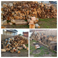 Huge Pile of Biomass Firewood